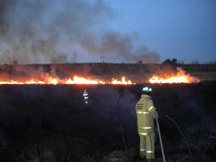 El fuego consumió 200 mil hectáreas en Alvear