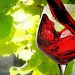vaso-vino-tinto