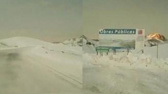 Pehuenche con nieve (1)