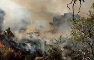 incendios san luis archivo (6)