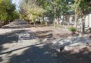 Aprobó el HCD proyectos de asfalto para dos distritos