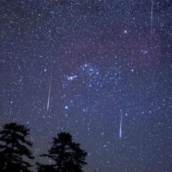 Lluvia de estrellas...