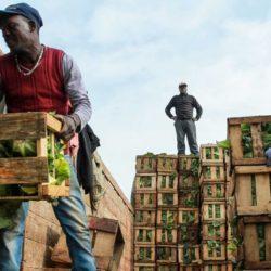 Preocupa en Chile la llegada de inmigrantes