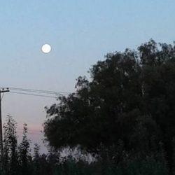 Superluna: el perigeo* será durante la mañana de este lunes