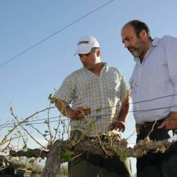 Legisladores visitaron a productores de Real del Padre y Jaime Prats
