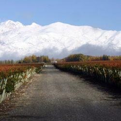 Vacaciones de invierno en Mendoza: 10% más de turistas que en 2016