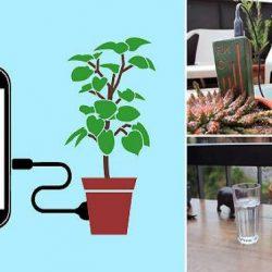 ¡Enchufa tu celular a una planta y cárgalo!