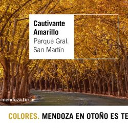 """Turismo presentó la campaña """"Mendoza, en otoño, es tendencia"""""""