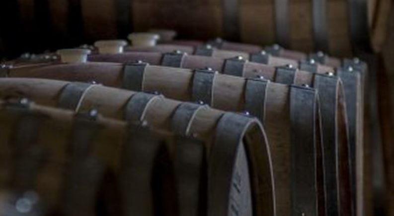 Informe analiza la exportación de vino argentino entre 2001 y 2015