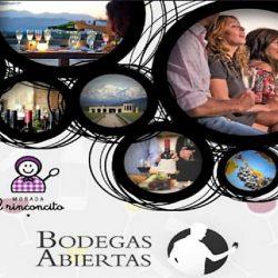 Para promover el turismo del vino: en junio llega Bodegas Abiertas