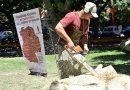 2º Edición del Programa Regional de Escultores Talladores de Madera