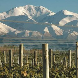 """Vacaciones de invierno: Mendoza entre los destinos """"multiproducto"""" preferido por los argentinos"""