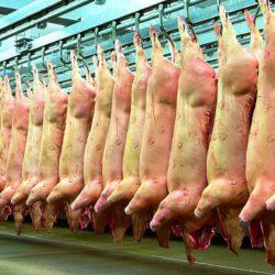 Importación de carne porcina:  proponen aumento del 50% en Ingresos Brutos