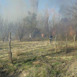 Incendios: brigadistas sofocaron el fuego