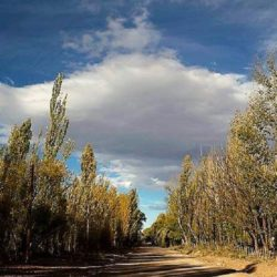 Clases suspendidas en Malargüe por el viento zonda