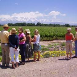Mendoza sede de la 2º Conferencia Mundial de Turismo Enológico