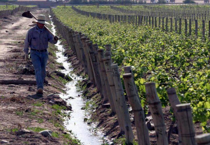 Bono Fiscal: propuestas de inversión por más $200 millones en el Valle de Uco