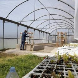 ¿Tenés un proyecto de innovación agrícola? El IDR convoca a emprendedores mendocinos