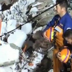 Japoneses hacen reverencia tras rescatar a joven de 19 años sin vida