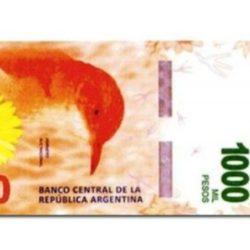 Billetes de $ 1000: Sturzenegger desaconsejaba su impresión