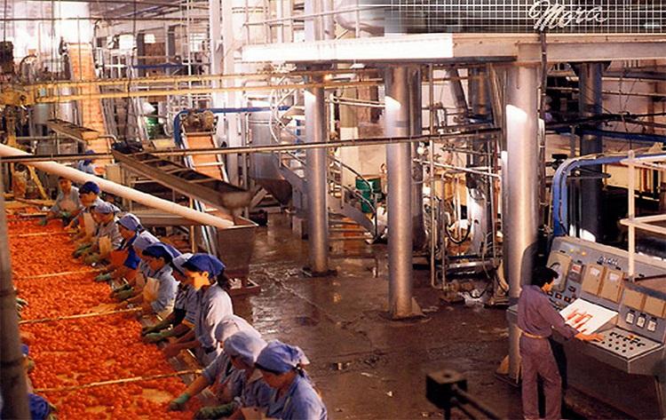 Aprueban proyecto para proteger la fruta industrializada de Mendoza