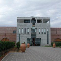 Mendoza: cae la inversión por la reforma de Dujovne