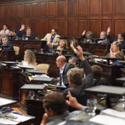 Radicales acompañaron Resolución justicialista