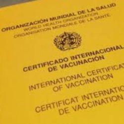 Vacunan contra la Fiebre amarilla