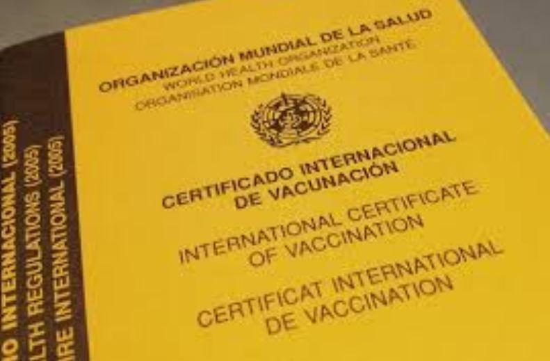 Resultado de imagen para fiebre amarilla vacuna