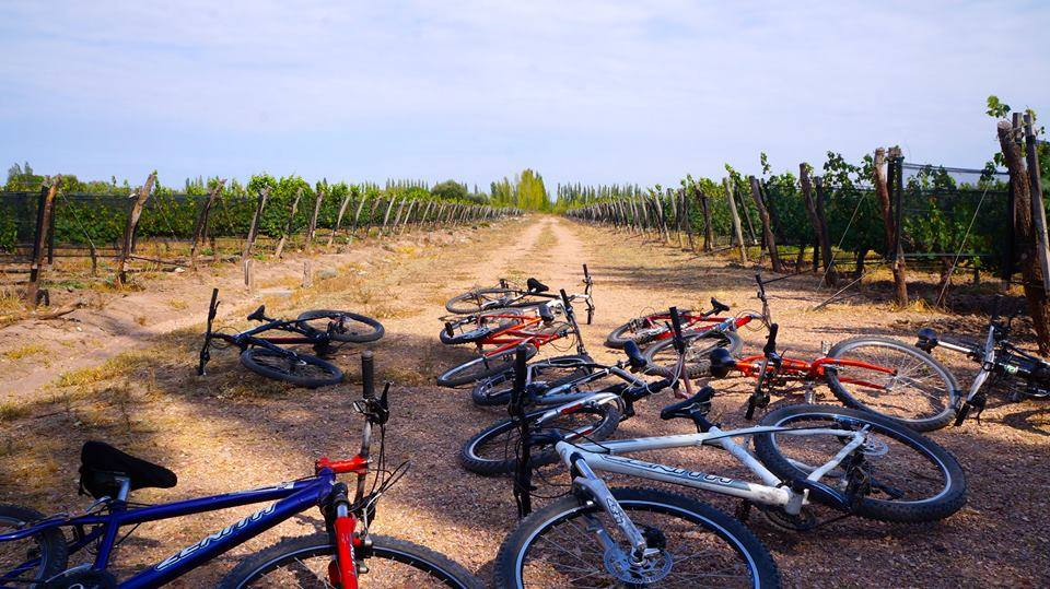 Hoy Es El D A Mundial De La Bicicleta D A Del Sur Noticias