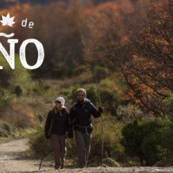 Turismo de la Nación lanza una plataforma para subir promociones y ofertas
