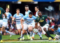 Rugby Championship: Los Pumas perdieron con Sudáfrica 34-21